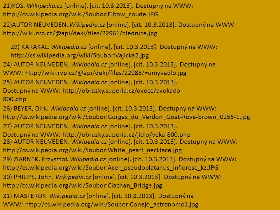 21)KOS. Wikipedia. cz [online]. [cit. 10. 3. 2013]